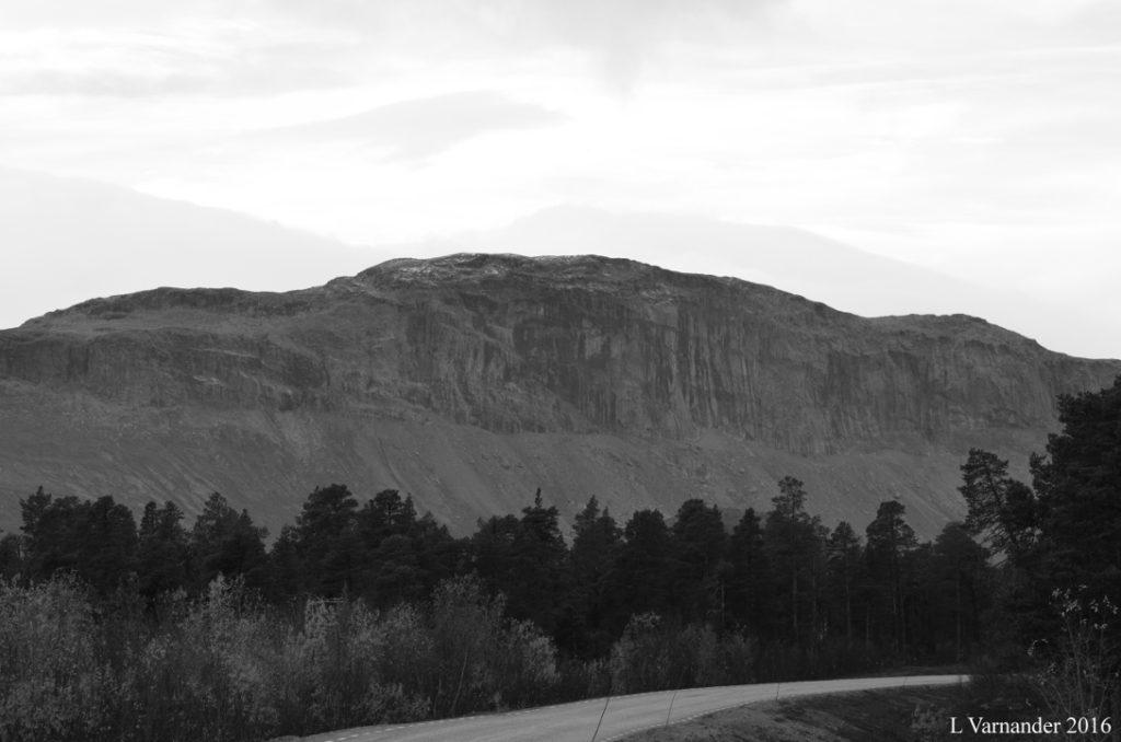 bergsida