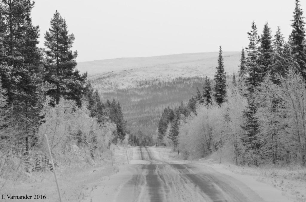 vintervag2